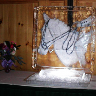 horse-rider-2-d.png